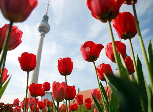 andels-Berlin2