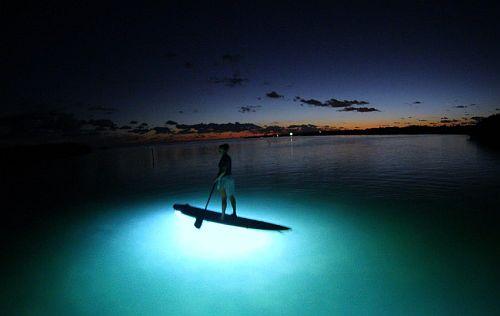 Nightboarding